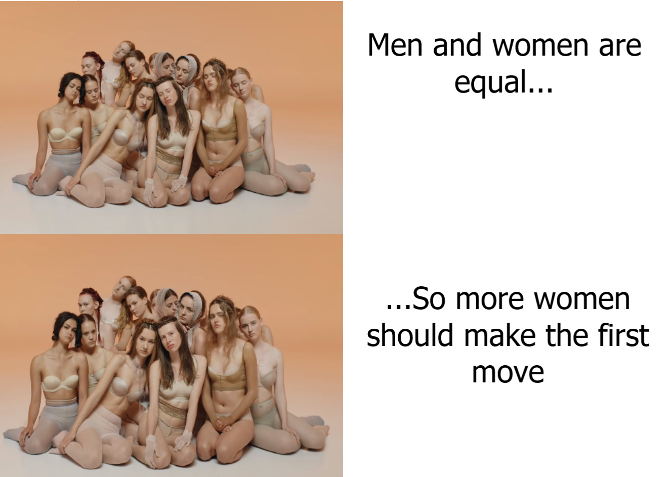 equality or equity - meme