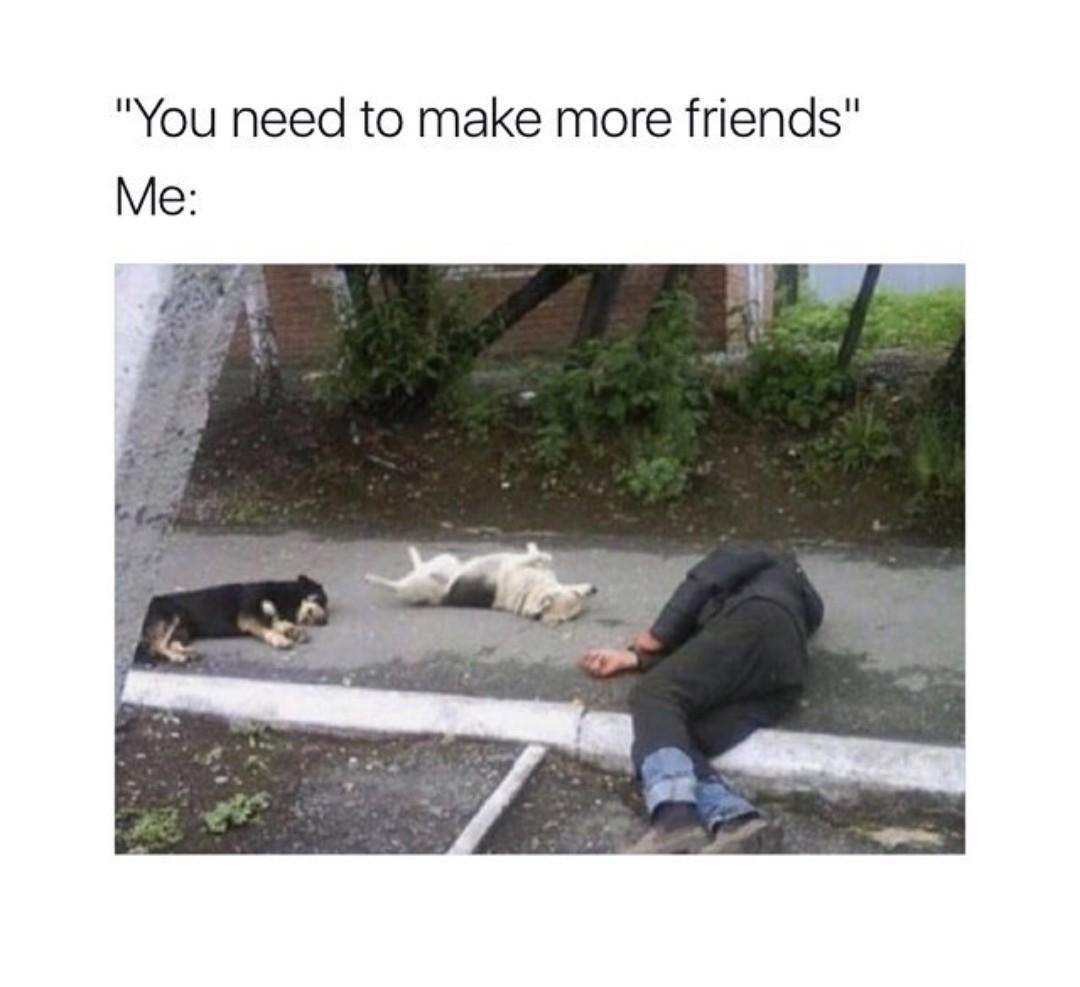 Antisocial for life - meme