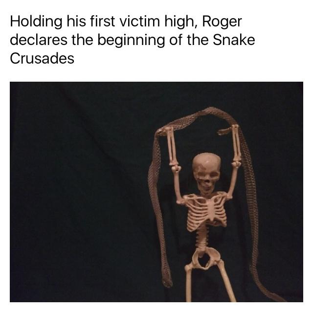 The Snake Kingdom must fall - meme