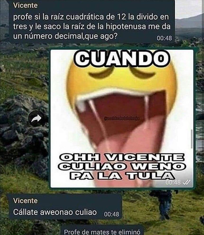 vicente - meme