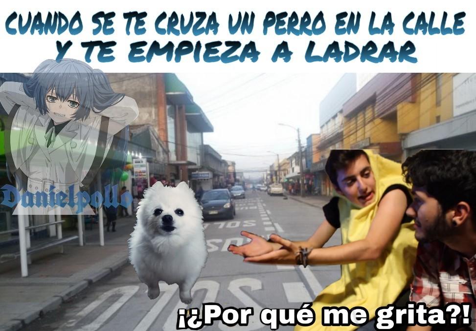 Gabe the gog | una calle de mi ciudad natal Temuco, Chile - meme