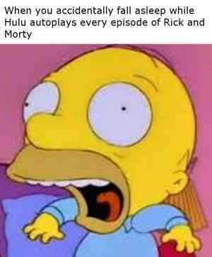 Same here but with American dad on Netflix lol - meme