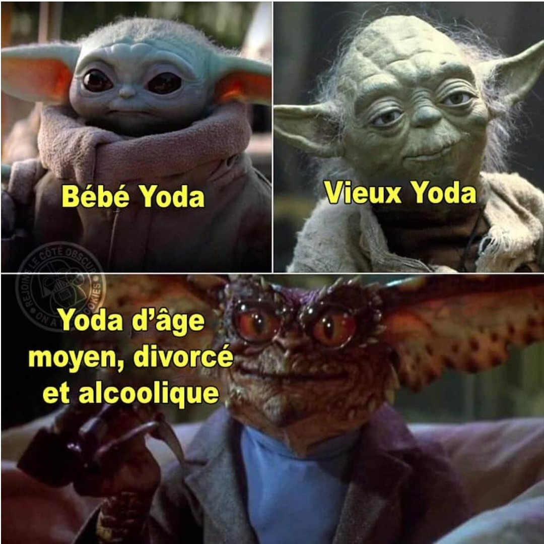 Pauvre Yoda - meme