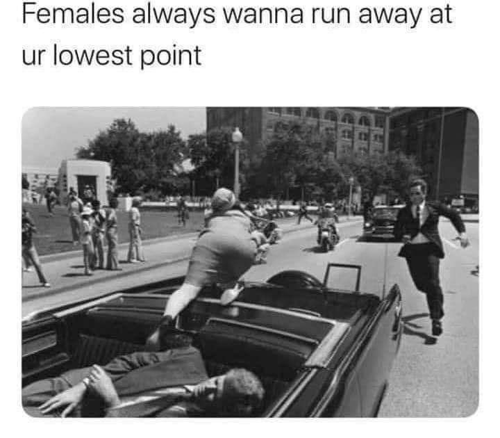 Females - meme