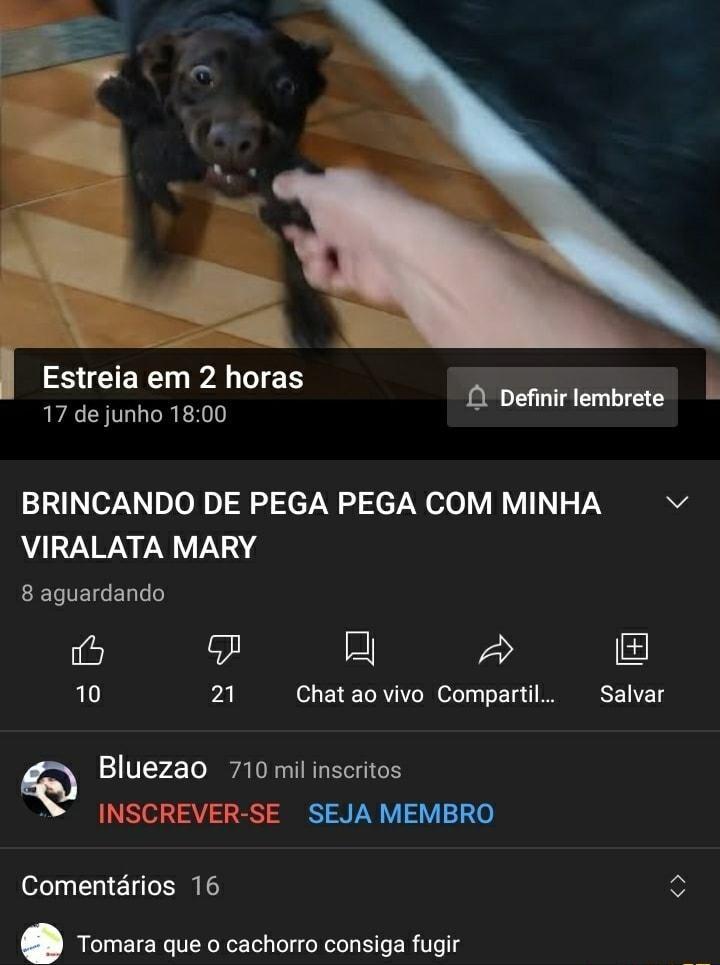Que Deus ajude esse cachorro - meme