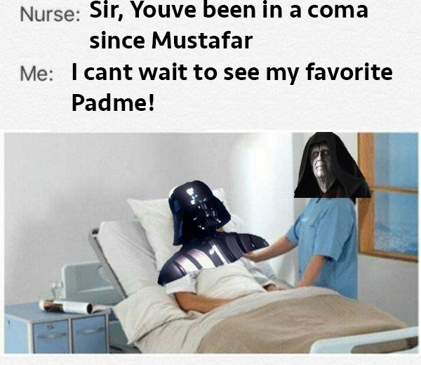 Vader can't wait to see his children too - meme