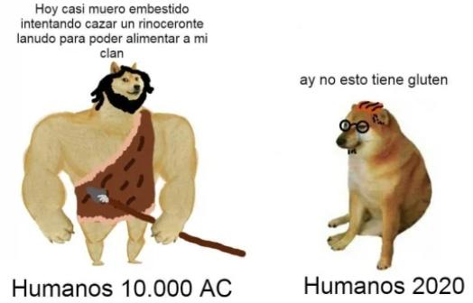 LA SOCIEDAD - meme