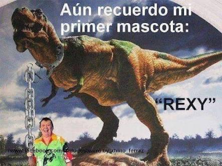 Rexi - meme
