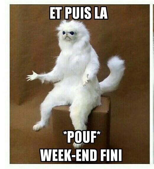 Pouf! - meme
