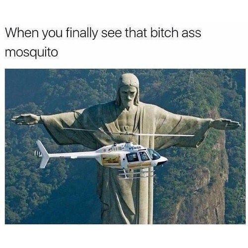gotcha bitch - meme