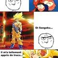 Dragon ball c'est la vie !!