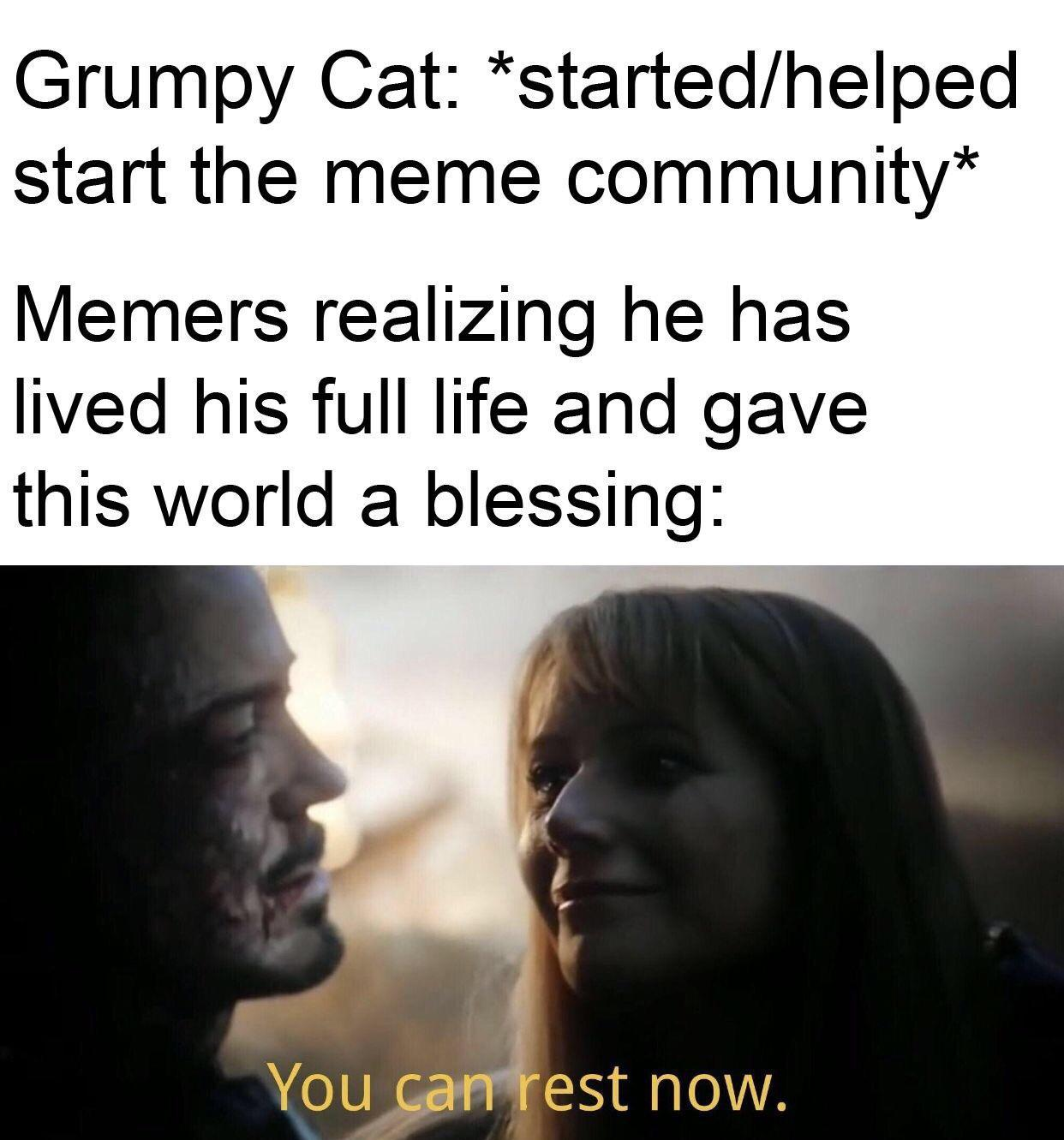 Grumpy - meme