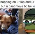 ah pups
