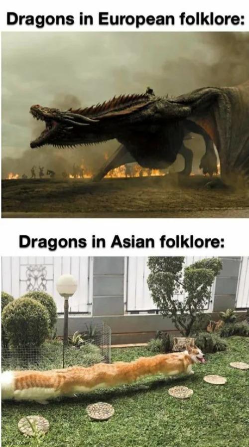 Long snake - meme