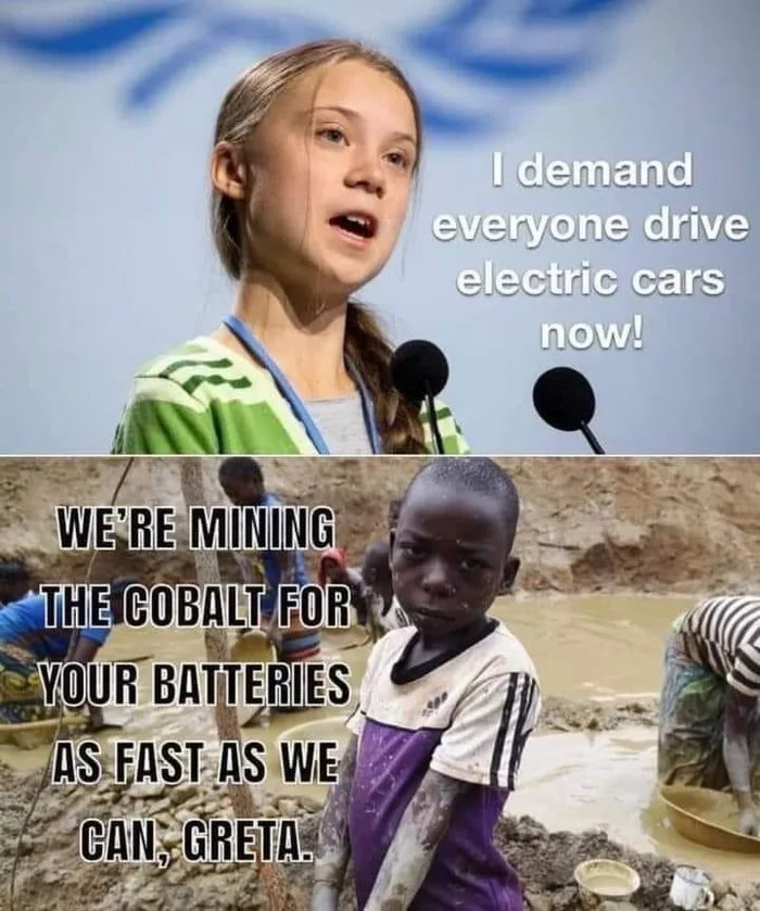 Electronic Cars for everyone - meme