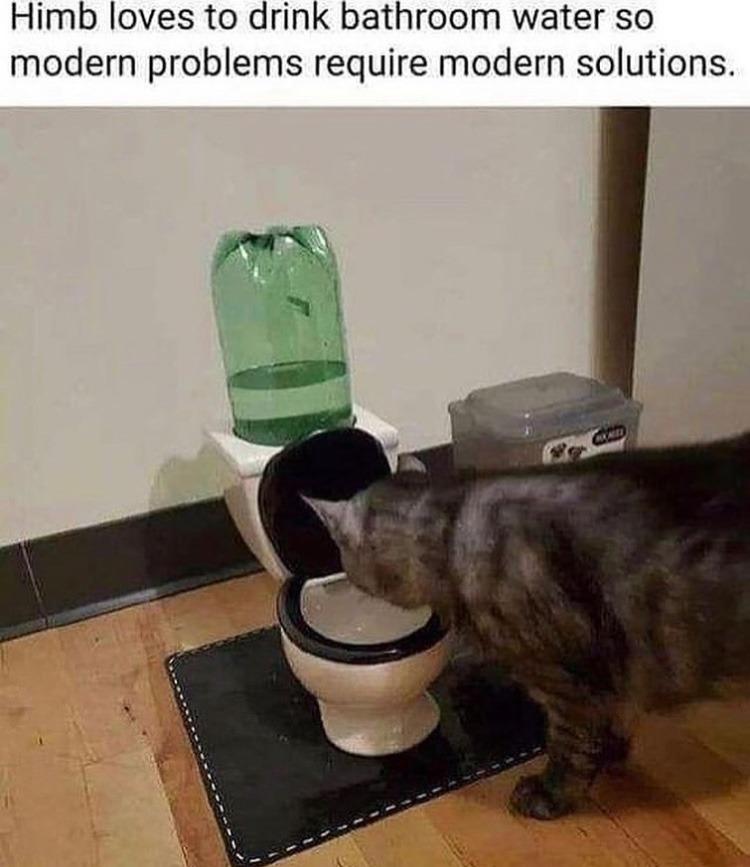 the sprite toilet - meme