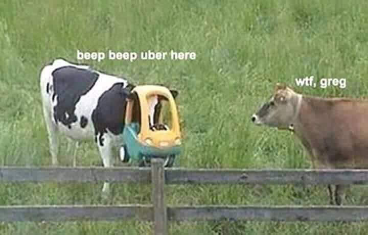 Your Uber is here - meme