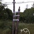 L'ADSL en Russie