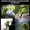 Kermit tiene razon
