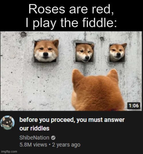 answer the riddle - meme