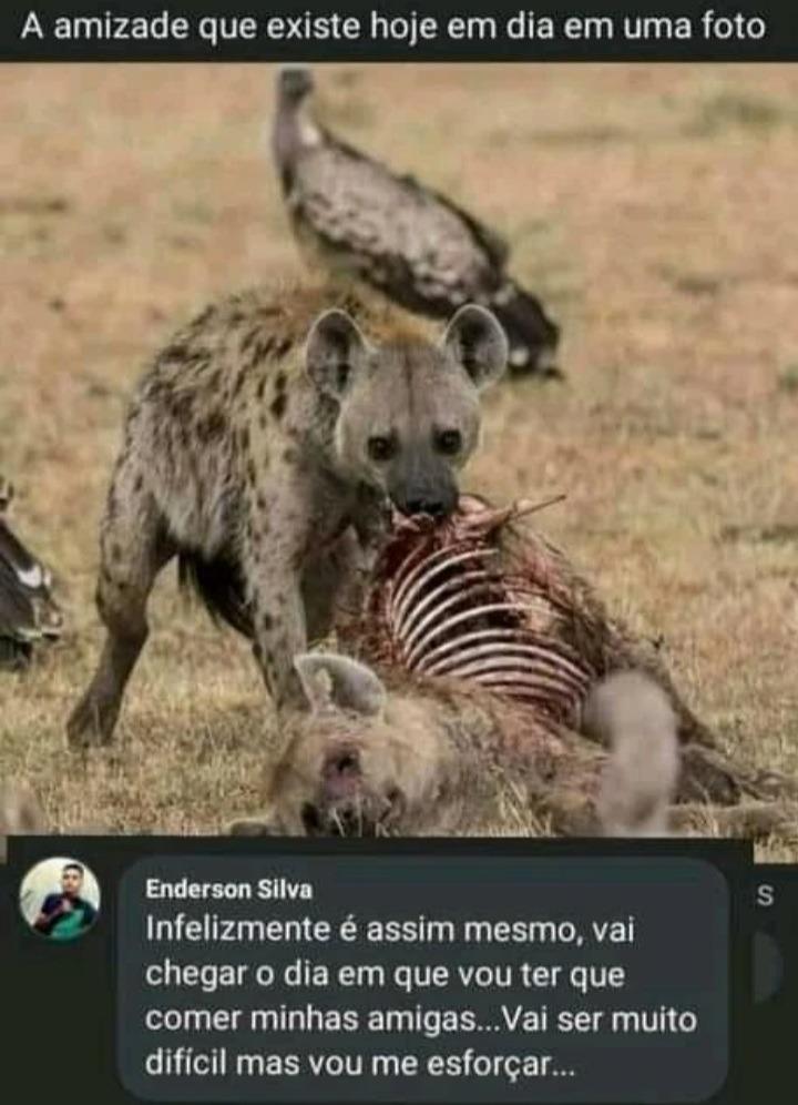 AA - meme