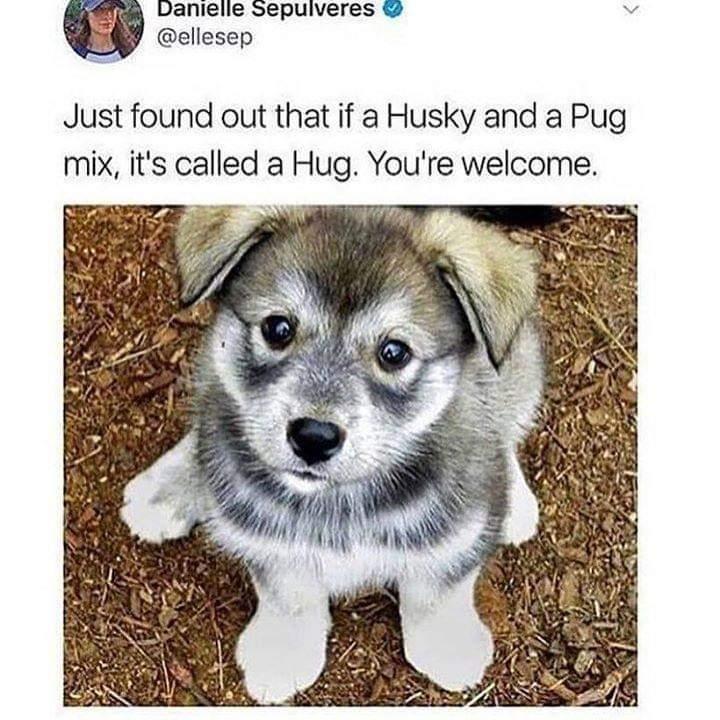 I want a hug - meme