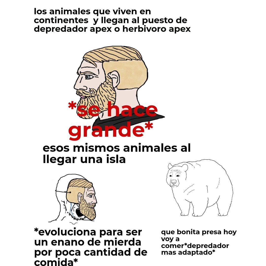 when hacerse grande es gud but hacerse chiquito es bad - meme