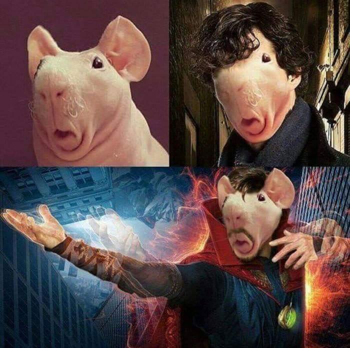 J'aime le bacon - meme