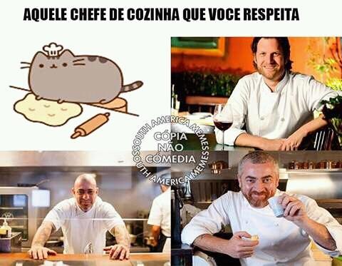 Ana Maria Braga versão felina - meme