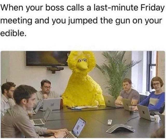 When your boss calls a last-minute Friday meeting - meme