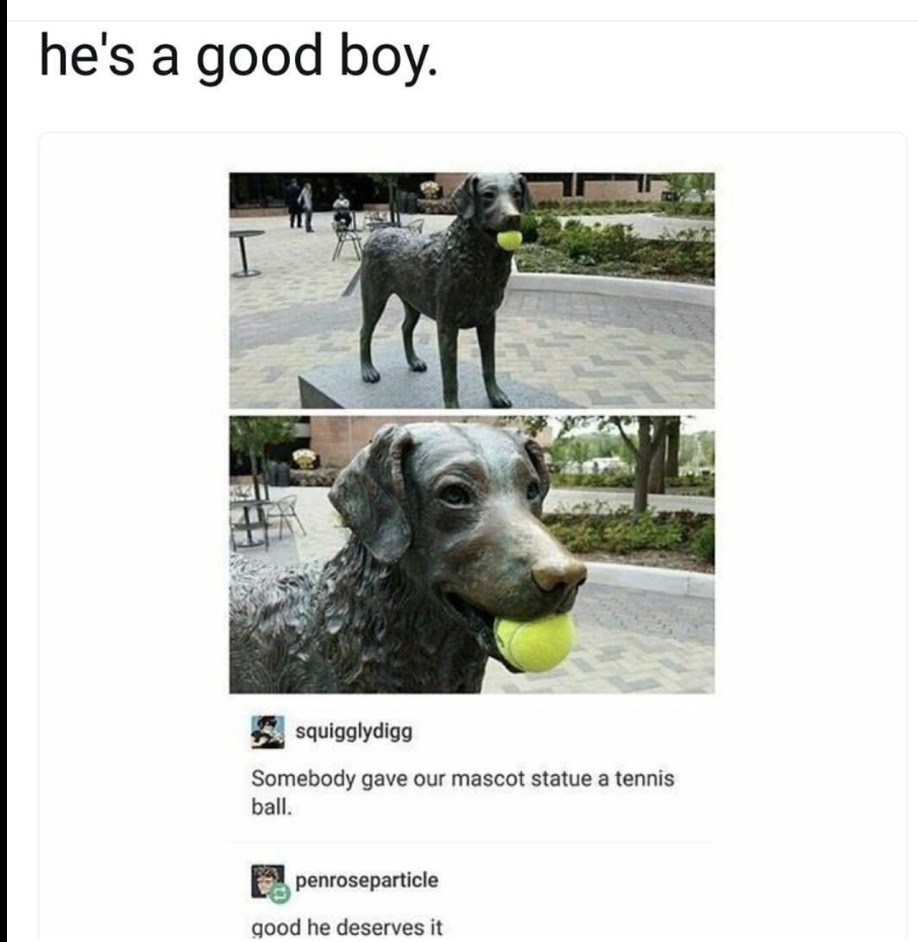 look at the good boy!! - meme
