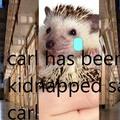 save carl