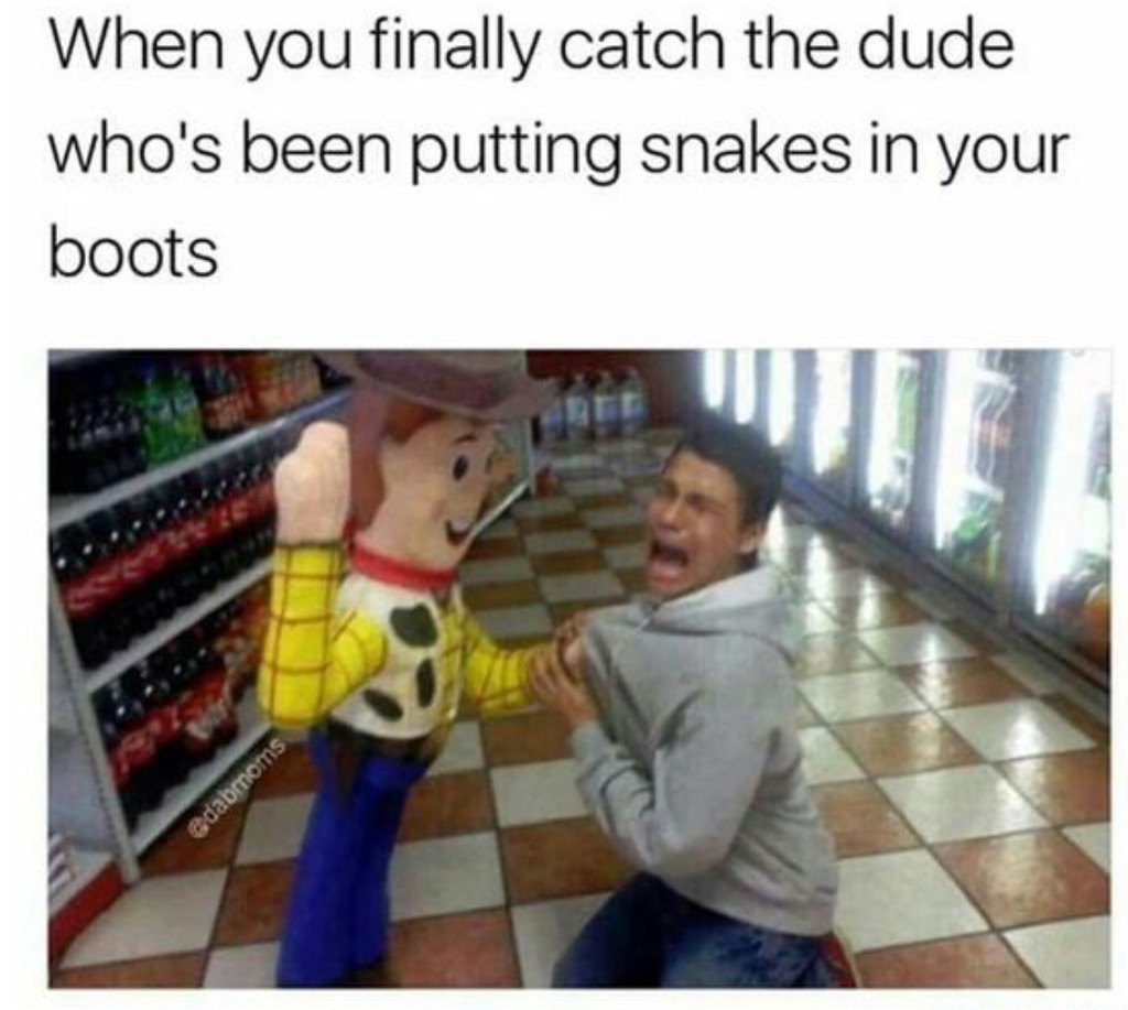 Finally there is no more snake in my boot. - meme