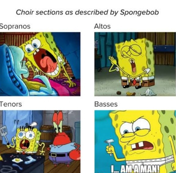 I quit choir bc I hated it. Twas a bad time. - meme