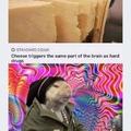 rat drug trip