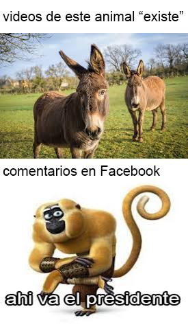 Momazos fesilibro - meme