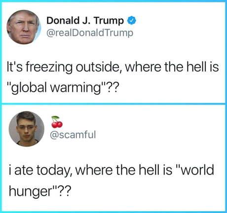 Donald trumps twitter - meme