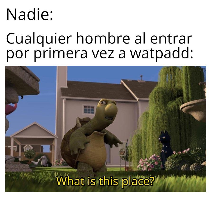F. - meme