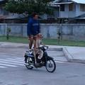 Dando um role co meu dog