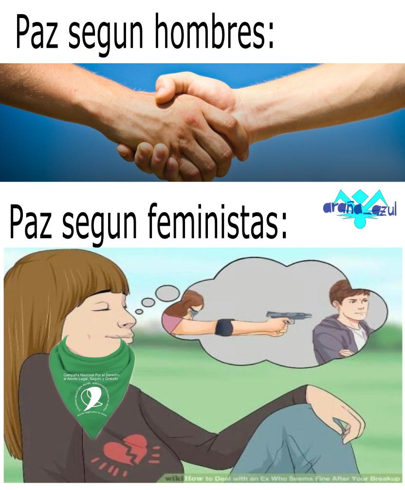 Las feministas no tienen cerebro - meme