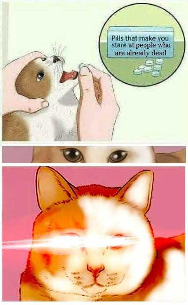 Omae Wa Mou Shindeiru - meme