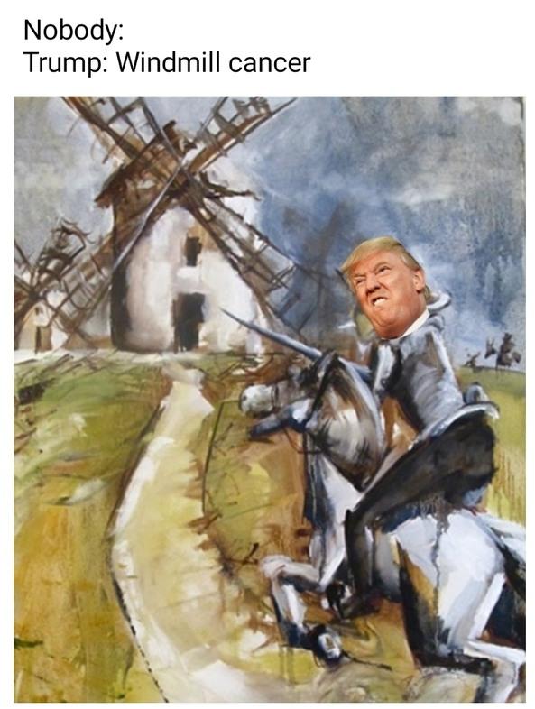 Donald Quixote - meme