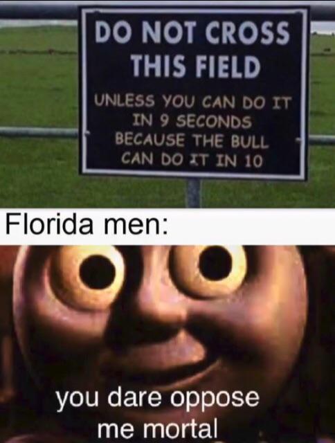 Florida man on a field - meme