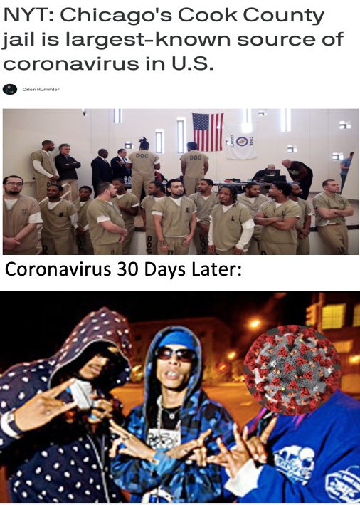 The virus gonna have to join a gang to survive in county. - meme