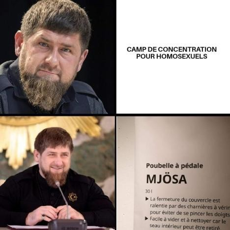 Mjosa - meme