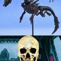 Los otakos están perdidos ante nuestro esqueleto anti otakos favorito
