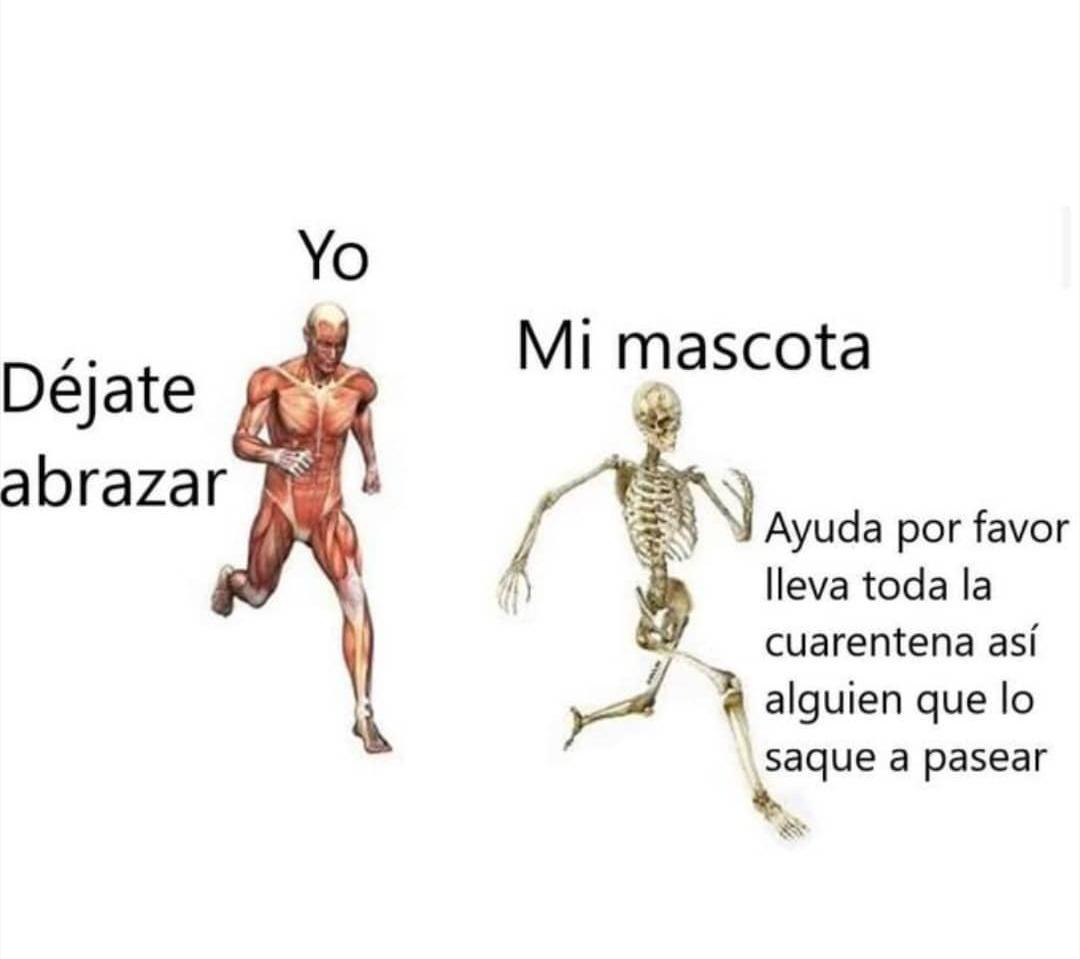 Corre mayonesito - meme