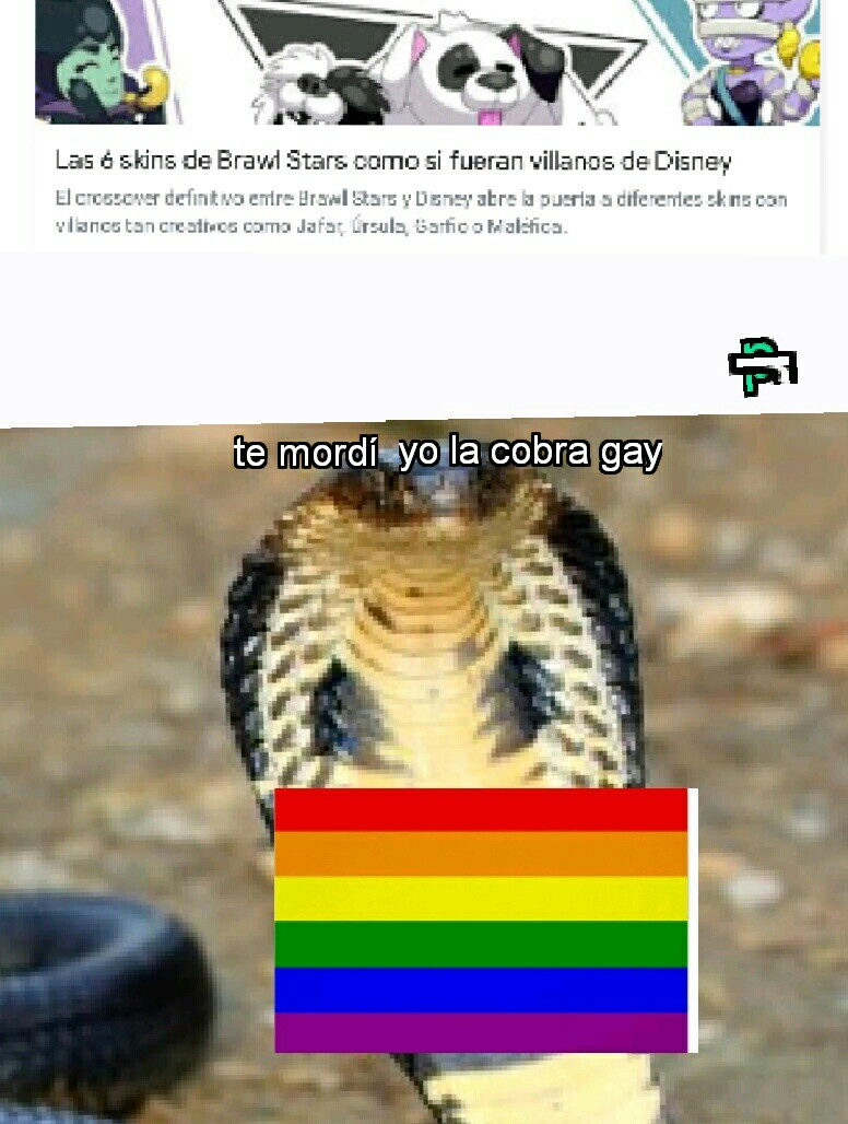 La cobra gay - meme