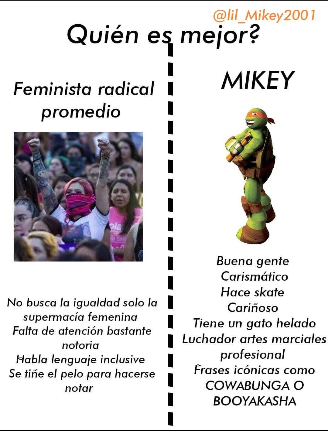 Feminista v mikey - meme