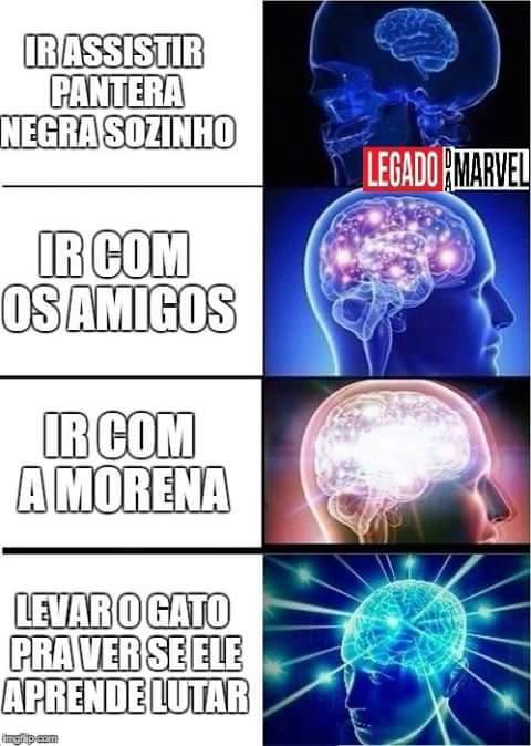 Pantera Negra - meme